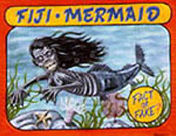 A Sideshow Banner for the Fiji Mermaid [Source]