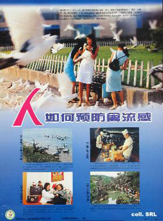"""Propaganda"" or ""Public Service Advertising""? This Contemporary Poster Urges Citizens to Fight Avian Flu (2004) [ENG] [Source]"