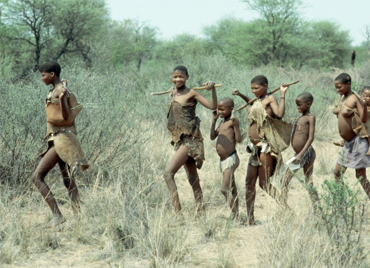 Kalahari Children Participate in Adult Activities from an Early Age5