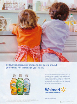 Fig. 5. This 2008 Ad Reflects Greater Attention to Gender Roles