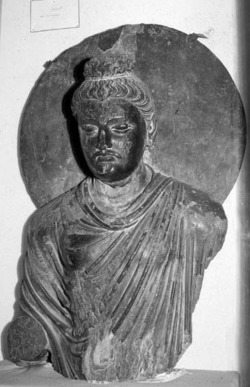 Fig. 16. Standing Buddha. Provenance unknown. H. 104 cm. Lahore Museum.