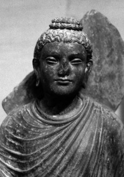 Fig. 49. Buddha. Detail. From Sikri. H. 77.5 cm. Chandigarh Museum.