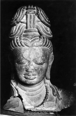 Fig. 7. Śiva head. Mid-8th c. Kota?, Shivpuri District, Madhya Pradesh, India. Sandstone. Archaeological Museum, Gwalior. Photograph: Courtesy of the American Institute of Indian Studies, 41305.