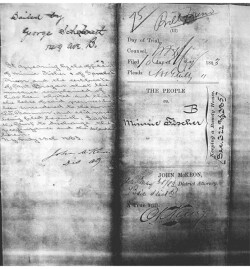 Figure 1. The indictment of Minnie Fischer for running a house of prostitution at 47 Bond Street in 1883. Note that the landlord, Phineas T. Barnum, is mentioned in the handwriting on the left side of the document. New York City Municipal Archives and Records Center.