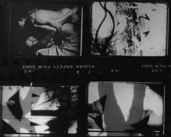 Figure 2. Still from Fuses. Photo courtesy Carolee Schneemann.