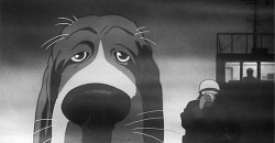Figure 5. Along with various birds and fish, this basset hound is one of several dogs Oshii depicts in the film as possessed of a gaze and a power of vision that is seemingly uncontaminated by the mendacity of the mass media that corrupts human perception.