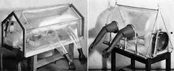 "Figure 4. Early Trexler isolator. Source: P. C. Trexler and L. I. Reynolds, ""Flexible Film Apparatus for the Rearing and Use of Germfree Animals,"" Appl. Microbiol.5 (1957): 406-12, 407."