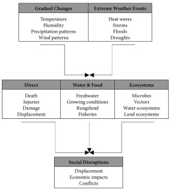 Diagram 1. How climate change impacts health