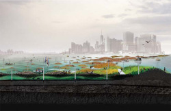 Figure 1. Rendering of Oyster-tecture at the Bay Ridge Flats, a shallow area out in the Gowanus Bay, New York with downtown Manhattan in the background. Image credit: SCAPE LANDSCAPE ARCHITECTURE PLLC.