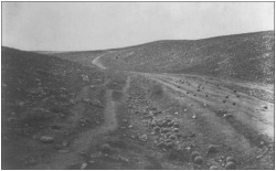 Figure 2. The Valley of the Shadow of Death (cannonballs in the ditch and on road), Roger Fenton 1819–1869, photographer, 1855, photographic print: salted paper. Roger Fenton Crimean War Photographs Collection, Library of Congress Prints and Photographs Division, Washington, DC.