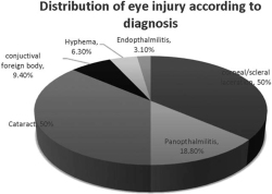 Figure 2. Distribution of eye unjuries according to diagnosis.