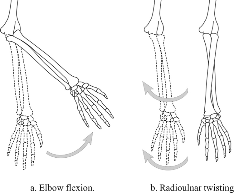 Movements of different joints moving the same mass.