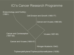 Figure 2. ICI's cancer research program.