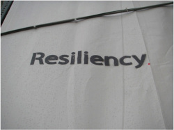 Fig 1. Resiliency 1.<br/><br/>Photograph by author.