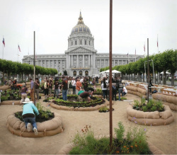 Fig 11. Victory Gardens, 2008. Temporary Public Art Project: Demonstration garden in front of City Hall, San Francisco.<br/><br/>Credit: Futurefarmers.