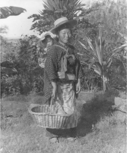 Figure 3. Japanese woman with Child, Pu'unēnē, Maui. Undated.<br/><br/>Photographer Ray Jerome Baker. Courtesy Hawai'i State Archives.
