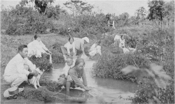 Figure 4. Japanese women washing clothes while caring for their children. Undated.<br/><br/>Courtesy Hawai'i State Archives.
