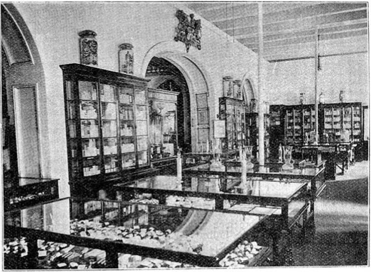 Figure 2. The hall of Stanistreet, Smith and Company's pharmacy, Calcutta, 1902. Wellcome Library, London.