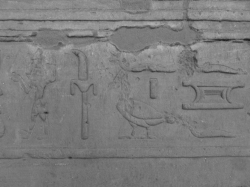Figure 7. Edfu: Courtyard, west wall bandeau. Hieroglyphs on the bandeau are often erased, particularly animal and anthropomorphic signs (Photo: Jun Yi Wong).