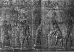 Figure 20. Dendera pl. 281, Chambre des Etoffes, Register 3. The individual in the middle was completely undamaged despite its similar appearance to other figures in the same scene (Photo: © IFAO).