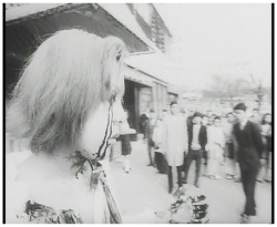 Figure 1. Oedipus is not a private tragedy in Funeral Parade of Roses (Bara no sōretsu, 1969).