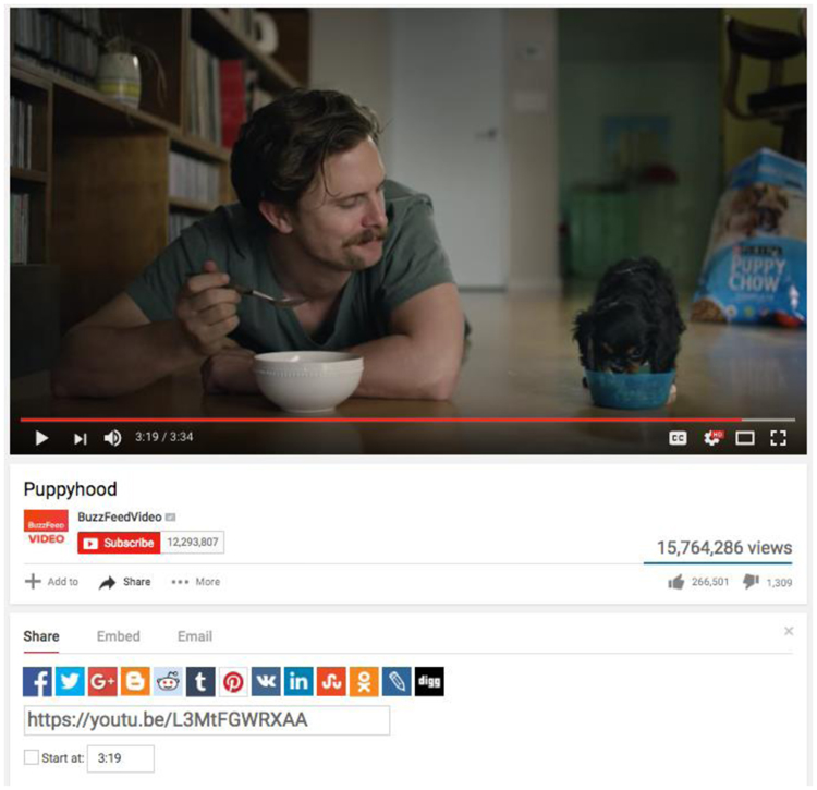 Fig. 33. YouTube's Share Buttons Make It Easy for Consumers to Spread Purina's Puppyhood Video