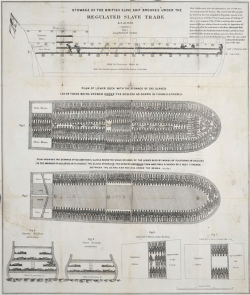 Figure 1. Stowage of the British Slave Ship Brookes Under the Regulated Slave Trade Act of 1788, Library of Congress Prints & Photographs Division, digital ID cph.3a34658.