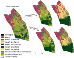 Figure 1. Land cover in Pu'u Wa'awa'a under different restoration and climate scenarios. The purple contours on the current land cover map outline the enclosure areas corresponding to the partial restoration scenario. The upper maps on the right correspond to the evolution of land cover, under the current climate for the partial and full restoration scenarios. The maps below correspond to the evolution of the land cover, under the RCP 8.5 midcentury future climate projection for the partial and full restoration scenarios.