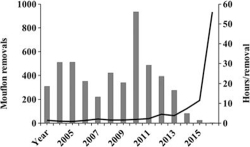 Figure 3. The annual number of European mouflon sheep removed (gray bars), and the effort expended (black line) to remove mouflon from the Kahuku Paddocks of Hawai'i Volcanoes National Park, 2004–2016.