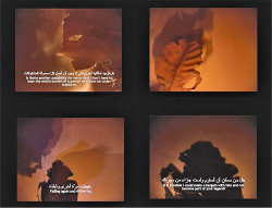 Figure 10. Arahmaiani, I Don't Want to Be Part of Your Legend, 2004. Still image from 12′ video. Image courtesy of the artist