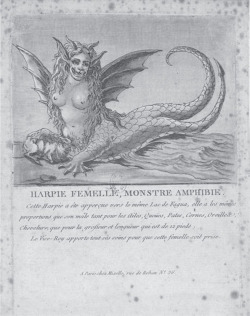 Fig. 2. Jean Marie Mixelle, engraver, print, Harpie femelle, monstre amphibie (Chez Mixelle, Paris, 1784). Courtesy of the Bibliothèque nationale de France.