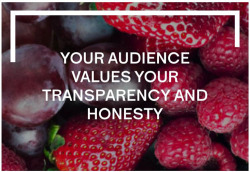 Fig. 8. An image from Set-Live's website suggests the agency's value of transparency and honesty in the work that it does.