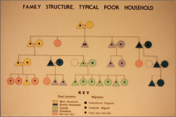 Figure 3. The author's hand-drawn chart showing a typical family history of emigration and other demographic characteristics.