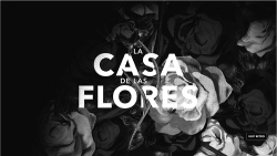 Figure 4. Title. Screenshot from La casa de las flores (2018).
