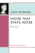 Noise That Stays Noise: Essays