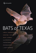 Bats of Texas Cover