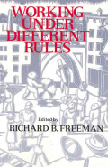 Working Under Different Rules cover