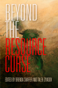 Beyond the Resource Curse cover