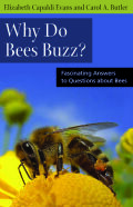 Why Do Bees Buzz?: Fascinating Answers to Questions about Bees