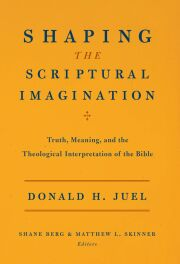 Shaping the Scriptural Imagination