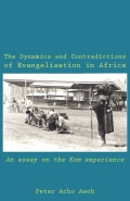 The Dynamics and Contradictions of Evangelisation in Africa Cover