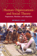 Human Organizations and Social Theory Cover