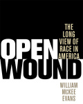 Open Wound: The Long View of Race in America