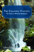 The Escaped Mystery Cover