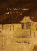 The Abundance of Nothing Cover