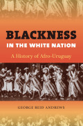 Blackness in the White Nation Cover