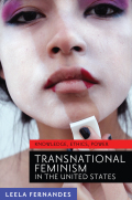 Transnational Feminism in the United States cover