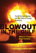 Blowout in the Gulf Cover
