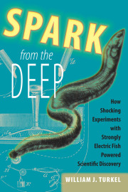 Spark from the Deep