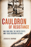 Cauldron of Resistance Cover